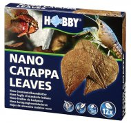 Nano Catappa Leaves, 12 St., SB